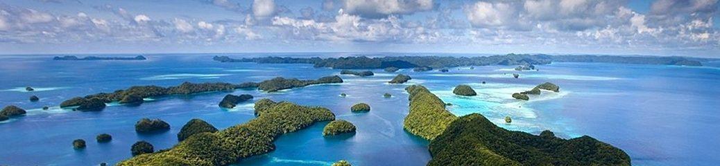 Palau / パラオ のベストシーズン