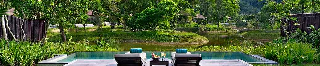 banyan-tree-lang-co
