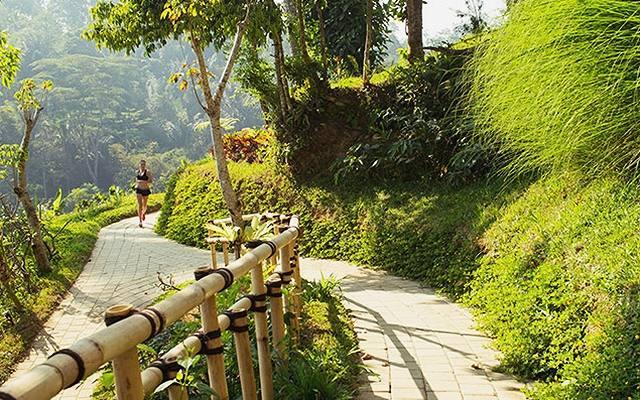 jogging-track2